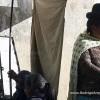 Fuerza Ras: Campaña de Ayuda a Fotógrafo Antofagastino