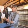 Productores y Vino de Toconao Inscribieron Sus Viñas y Podrán Comercializar sus Vinos