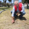 Municipio: Áreas Verdes Serán Recuperadas en un Plazo de Dos Meses