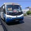 Línea 119 de Taxibuses Amplía Recorrido Hasta Sector Residencial Parque San Marcos y Costa Laguna