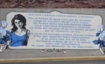 Descriterio: Revolución Democrática Borró Parte Del Homenaje a Joven Fallecida