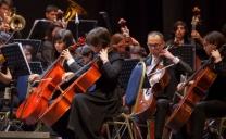 Orquesta Sinfónica Juvenil Regional de Antofagasta Estrenará su Primera Presentación Virtual Este Jueves