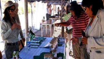 EN SAN PEDRO DE ATACAMA SE REALIZÓ LA PRIMERA FERIA DE SERVICIOS PÚBLICOS PARA EMPRENDEDORES
