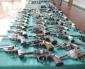 Reiteran Llamado a Entregar Armas de Manera Voluntaria y Anónima