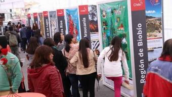Muestra Que Destaca Los Íconos de Mayor Orgullo Para Los Chilenos Llega a Antofagasta
