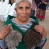 Cultora Oriunda de Ollagüe es Reconocida a Nivel Nacional Con el Sello de Artesanía Indígena