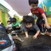 175 Niños Con Discapacidad Son Beneficiados Con Convenio de Primera Infancia en 2018