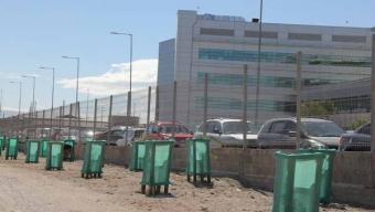 Antofagasta y Calama Tendrán Más Barrera Arbóreas en Zonas Adyacentes a Las Vías Del Tren
