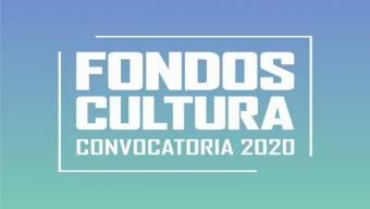 Charlas Informativas Por Convocatoria 2020 de Fondos Cultura Llegarán a Las 9 Comunas de la Región