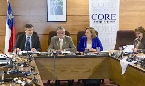 """Senadora Carolina Goic al CORE: """"Sin Recursos Permanentes la Ley Nacional Del Cáncer Será Letra Muerta"""""""