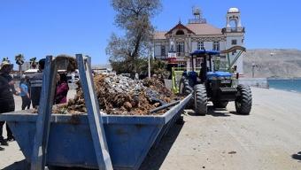 15 Tonelada de Basuras Fueron Retirados de Playas de Mejillones