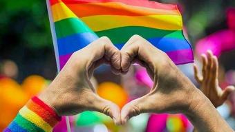 Aprueban en General Proyecto Sobre Matrimonio Igualitario