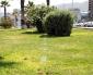 Alcaldesa Rechaza Ensanchamiento de Costanera: Proyecto de Serviu Destruirá Gran Parte Del Área Verde y Mobiliario Urbano