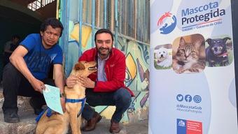 Continúa en la Región el Registro Nacional de Mascotas