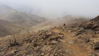Prohibición de Ingreso y el Pago de 5 UTM  Fue La Condena Por Encender Fogata en la Reserva Nacional La Chimba