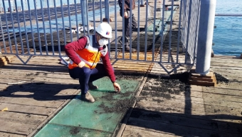 Realizaron Limpieza de Muelle Histórico de Antofagasta Tras Quemas Sobre la Estructura