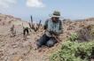 Identifican Nuevas Especies Que Habitan Ecosistema de la Reserva Nacional La Chimba