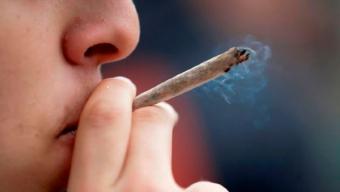 Expertos Alertan Por Alza de Consumo de Marihuana en Escolares