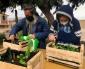 Enseñan Finanzas y Cultivo de Huertos a 18 Personas en Situación de Calle