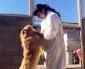 Fundación Anastasia Rescata, Cuida y Alimenta a Más de 400 Canes en Calama y Alrededores