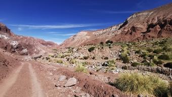 Comité Corfo Antofagasta Benefició a 113 Pymes Regionales Del Sector Turismo