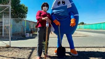 Aguas Antofagasta Junto a Vecinos Mejoraron Áreas Verdes de la Población Sol y Cobre de Calama