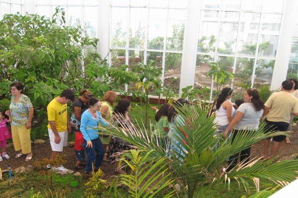 Jard n botanico de aguas antofagasta ofrece entretenidas for Actividades para jardin