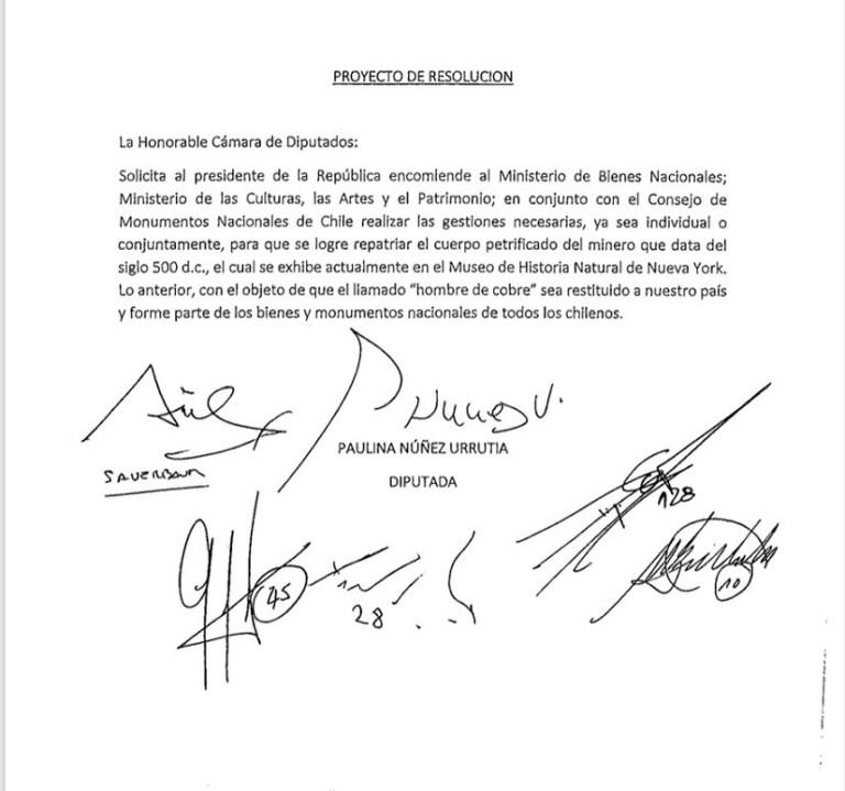 Proyecto-Paulina-Núñez